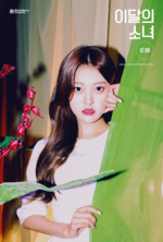 12-00 (Star) Promotional Poster Choerry 2