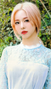 ViVi Up & Line Photocard Scan by loonascans