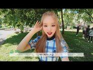 이달의소녀탐구 -343 (LOONA TV -343)