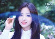 Yyxy Beauty & The Beat Olivia Hye 2