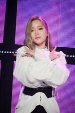 190322 Show Champion Stage Butterfly Go Won