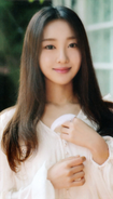 Yves Up & Line Photocard Scan by loonascans