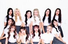 LOONA ++ A Limited Photocard 1