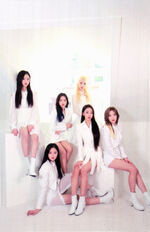 LOONA XX A Limited Photocard Up