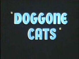 Doggonecats2.jpg