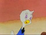 Homer Pigeon