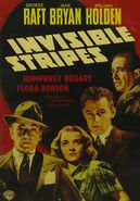 Lt invisible stripes