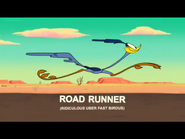 Fast and Steady Road Runner