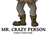 Mr. Crazy Person