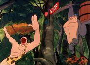 Gorilla My Dreams Tarzan