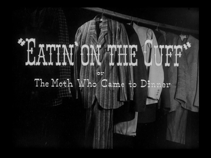 Eatin' on the Cuff or The Moth Who Came to Dinner