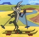 Roller Skis.png