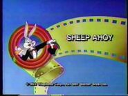 """The Bugs Bunny and Tweety Show"" title cards collection -2"