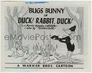 8x10 duck rabbit duck a JR00520 B