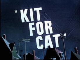 Kitforcat.jpg