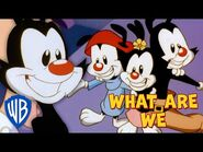 Animaniacs SING-ALONG 🎤 - What Are We? - WB Kids