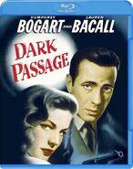 Lt dark passage blu