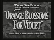Warner Brothers - Orange Blossoms For Violet - 1952
