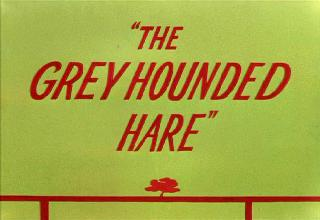 The Grey Hounded Hare