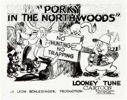 Northwoods1