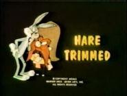 Lt hare trimmed tbbrrs fs