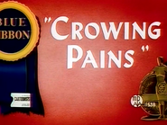 Crowing Pains BETTER QUALITY