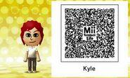 Kyle Bush Mii Tomodachi Life QR