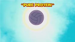 Proteinapurattg.png