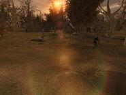 Zombies - graveyard (Construction Site, Lost Alpha)