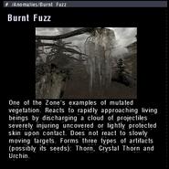 Burnt Fuzz