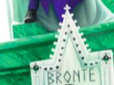 Councillor Bronte