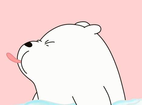 Les ours ours au-dessus que nous portons ours Wallpaper Blog Naver (2).jpg