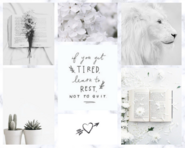 White Aesthetic Moodboard