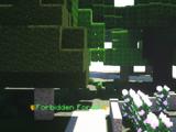The Forbidden Forest