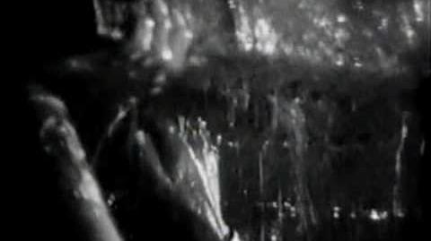 L'arche_de_Noé_(Noah's_Ark)_-_1928_-_Michael_Curtiz