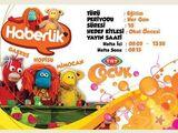 Haberlik (Partially Found late 2000's Turkish Kids Series)
