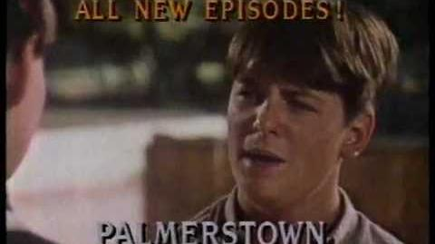 Palmerstown, U.S.A. (1980-81 CBS Drama)