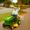 George Jones Drunk Driving a Lawn Mower (Lost Video)