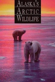 Alaska's Arctic Wildlife (Lost 1997 Documentary)