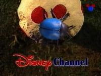 DisneyBug1997.webp