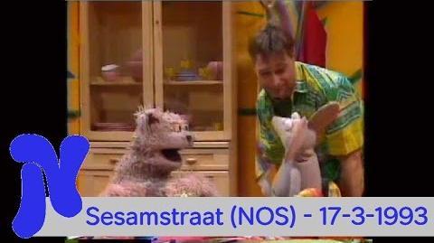 NOS Nederland 1 - Sesamstraat (17-3-1993)
