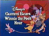 Lost Disney's Gummi Bears/Winnie the Pooh Hour Episodes