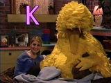 Sesame Street Episode 4026 aka Big Bird Finds a Turtle (2002 Episode Ending)