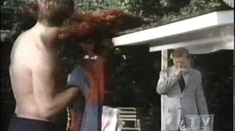 Delvecchio (1976 CBS Crime Drama)