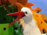 Margaret the Stork
