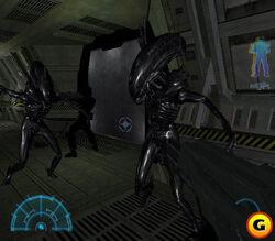 Alien screen003.jpg