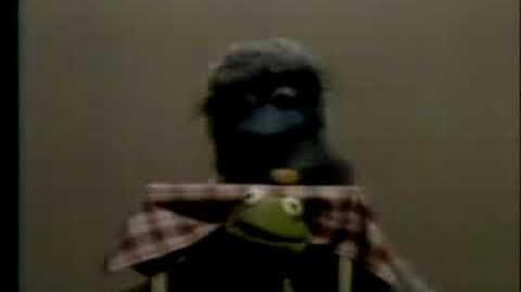 Classic_Sesame_Street_Kermit_on_Between_(German_dub)