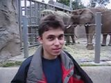 Me At The Zoo (Lost HQ Version, 2005)