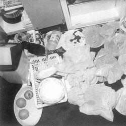 """Issei Sagawa """"The Japanese Cannibal"""" (lost Renee Hartevelt death footage 1981)"""