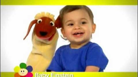 Baby Einstein (partially found BabyFirstTV airing of toddler program; 2010-2012)